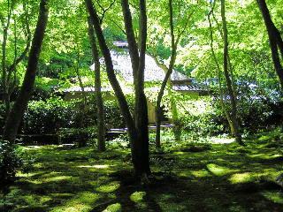 otera-kyouto1603.jpg
