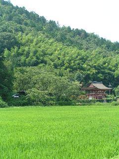 otera-kyouto1903.jpg