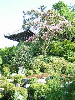 otera-kyouto2005.jpg