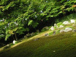 otera-kyouto2404.jpg