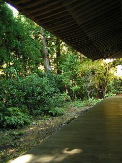 otera-kyouto3206.jpg