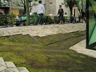 tokyo2010.jpg