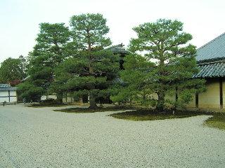 zen-kyouto0607.jpg