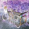 homelessbike.jpg